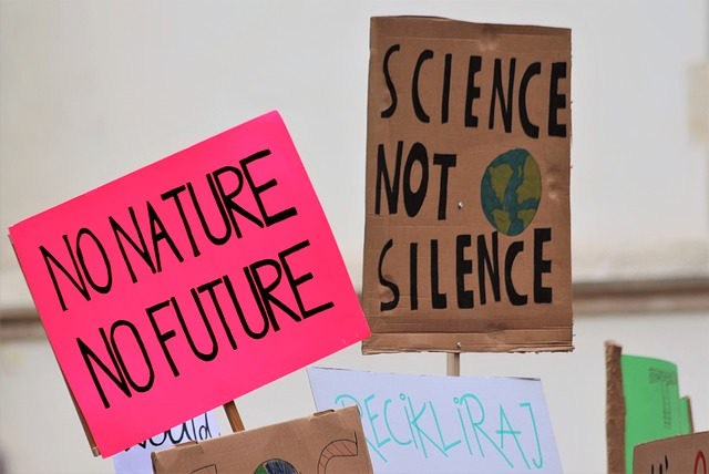 Environment Sustainability Leadership Programme at Sanskriti School