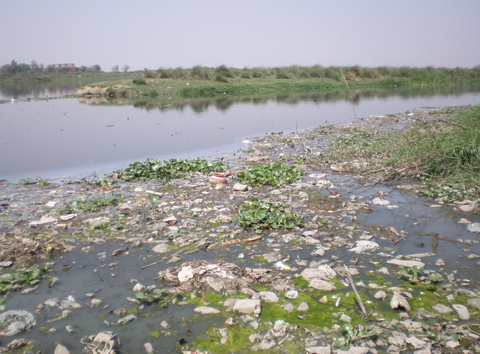 The Challenge of Cleaning the Yamuna
