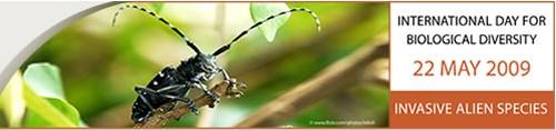 YBP Invites All to Celebrate International Day for Biodiversity