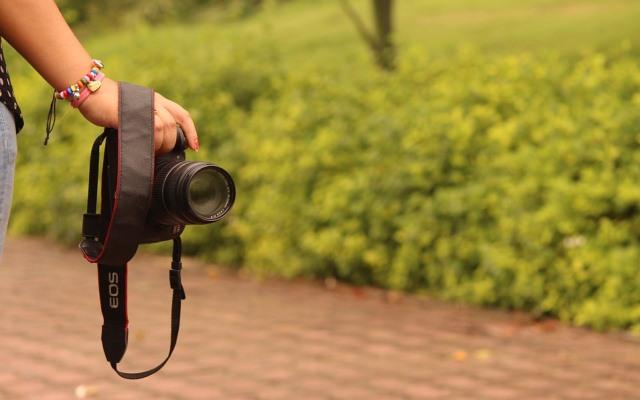 Final Call for CMS Vatavaran Environment & Wildlife Competitive Film Festival