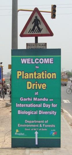Some Good for the City: Plantation Drive at Garhi Mandu on IBD 2009