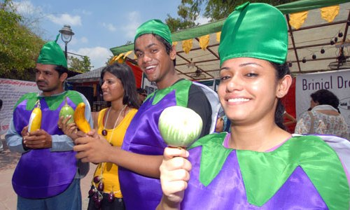 Bt Brinjal
