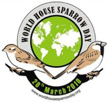 20th March, 2010: World House Sparrow Day