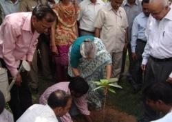 CM Shiela Dixit Green CM