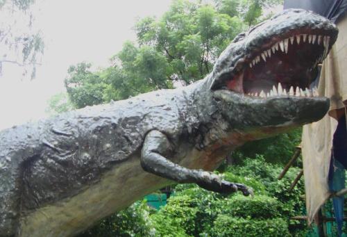 NMNH Dinosaur