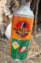 pesticides along Yamuna