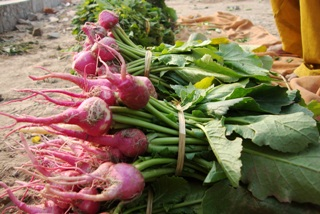 vegetables along Yamuna