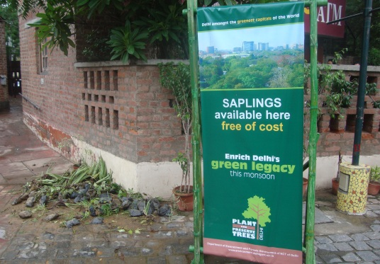 Free Saplings for the Delayed Monsoon at Dilli Haat