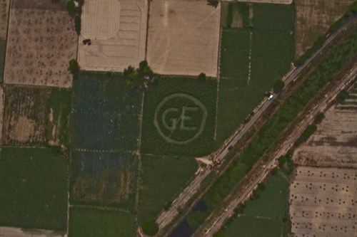 Greenpeace crop circles appear across the country, Sound alarm against GM food invasion