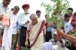 Celebrate Van Mahotsav: Bring Alive the Spirit to Plant and Save Trees