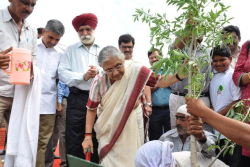 Delhi CM Sheila Dixit makes that extra effort to plant trees