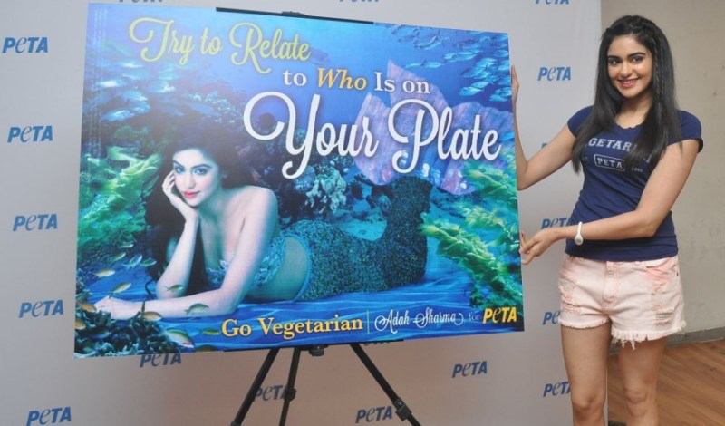 Adah Sharma Launches PETA's Go Vegetarian Campaign