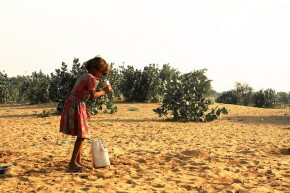 MoEFCC Calls for Ideas, Designs, Paintings and Posters to Combat Desertification