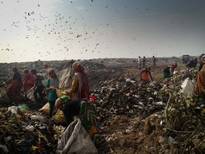 CPCB Marked World Environment Day Along Ghazipur Landfill Site