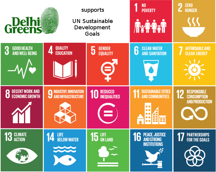 What are the UN Sustainable Development Goals