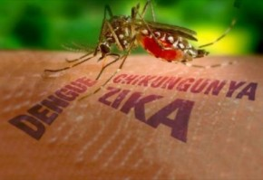 RB Pledges $1 Million Zika Relief Package to Fight the Virus