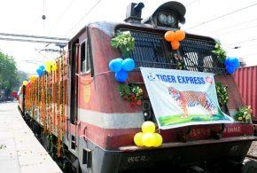 Next Vacation, Take the Tiger Express to India's Hinterland
