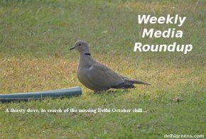 Weekly Green News Update for Week 42 (Oct 17 to 23), 2016