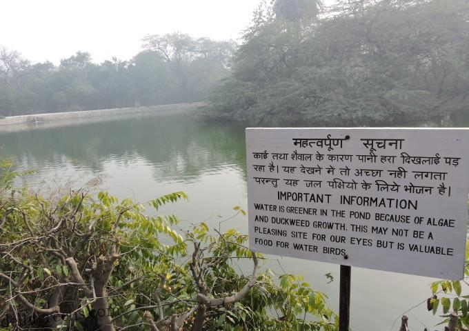 Importance of Wetlands and Their Conservation Challenges in Delhi