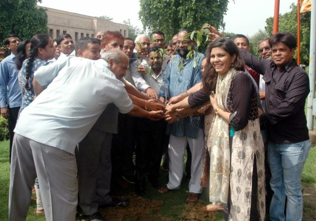 Tree Plantation Drive By National Gallery of Modern Art