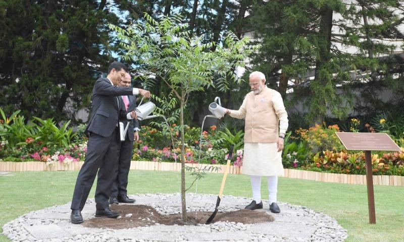 Prime Minister Shri Narendra Modi Planting A Sapling at NTU, Singapore