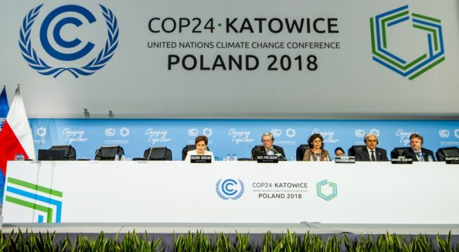 Will COP 24 Be Able to Prevent the Global Meltdown?