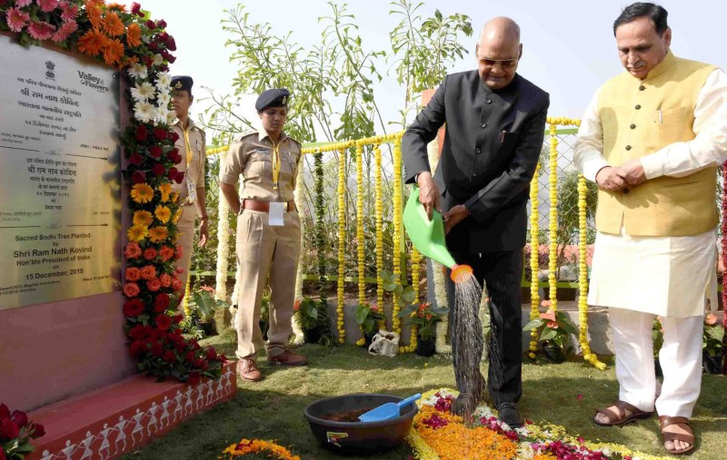 Planting a Tree to Remember the Iron Man of India – A Fitting Tribute