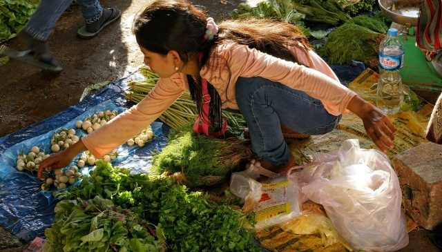 Think Global Act Local on Food, FAO Chief Tells World Mayors