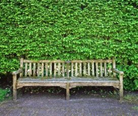 Going Green Gets Easier: Rent Furniture and Contribute Your Bit
