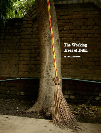 The Underground Workforce of Delhi – Trees