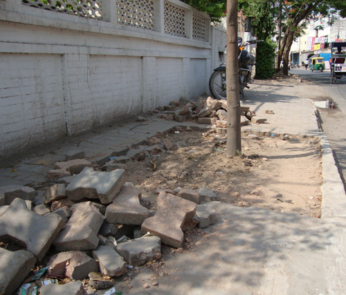 Trees Dechoked: GK-I Residents Show the Way Against Concretization