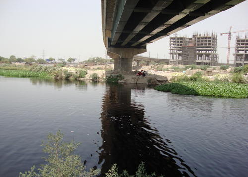 Green Blue Options for the Dead Delhi River