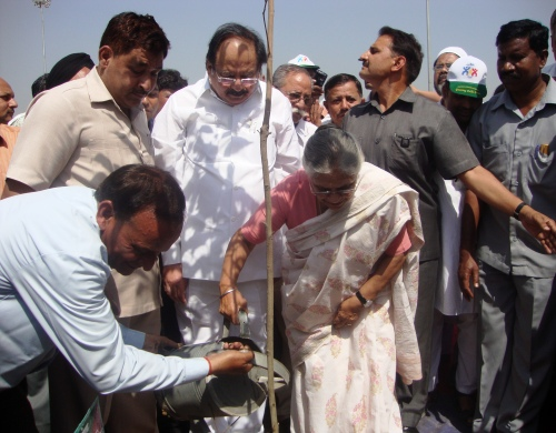 CM Sows Seeds of City Forest on World Forestry Day