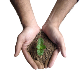 Delhi Greens Thanks Applicants of Delhi Greens SOIP Call