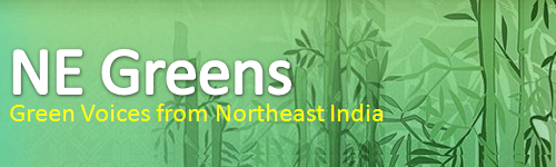 NE Greens