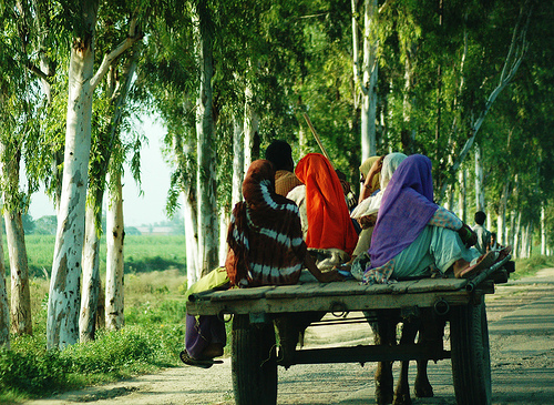 SBI Fellowship, toward rural India