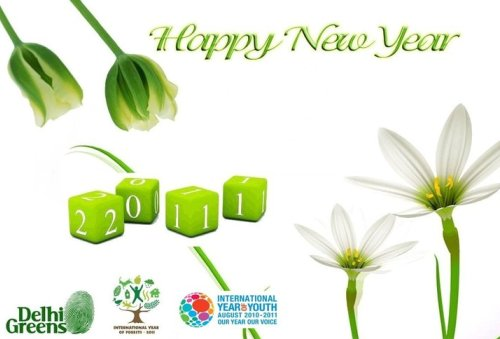 Welcome New Year 2011, International Year of Forests and More