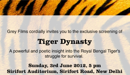 "Invitation to the Exclusive Screening of ""Tiger Dynasty"""