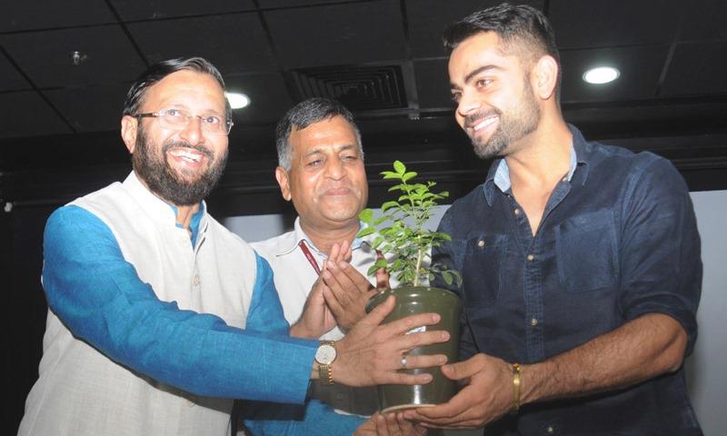A Sapling for Virat Kohli, on World Environment Day 2015