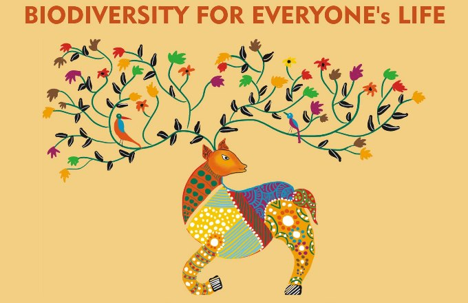 Conclave on Biodiversity for Everyones Life Held at Miranda House, DU