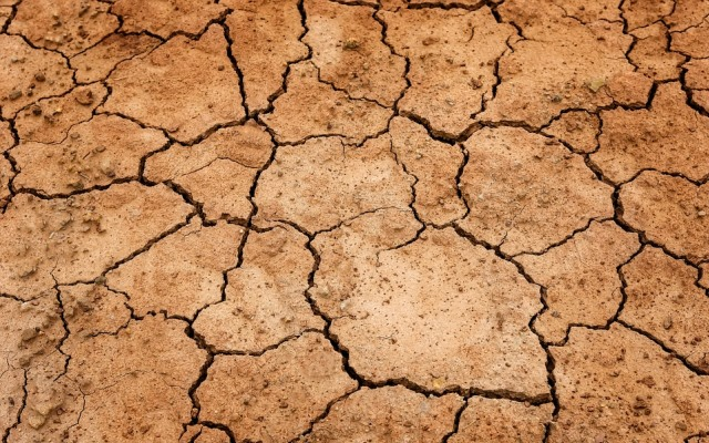 Parched and Pumped Out: Story of the Looming Water Crisis in India