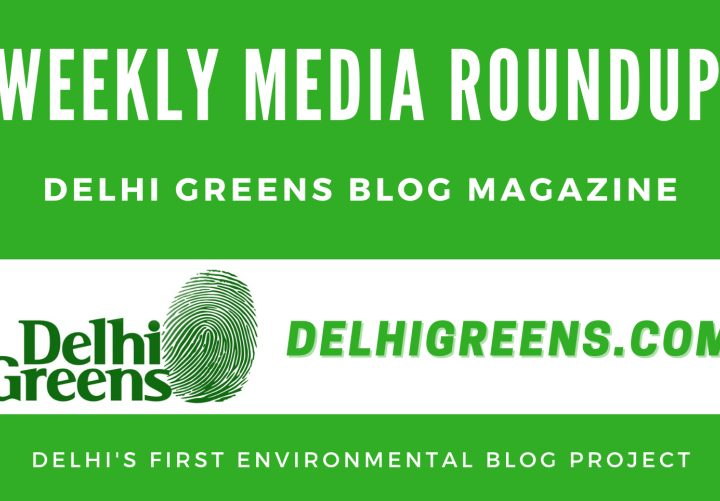Weekly Environmental News Update for Week 01, 2021