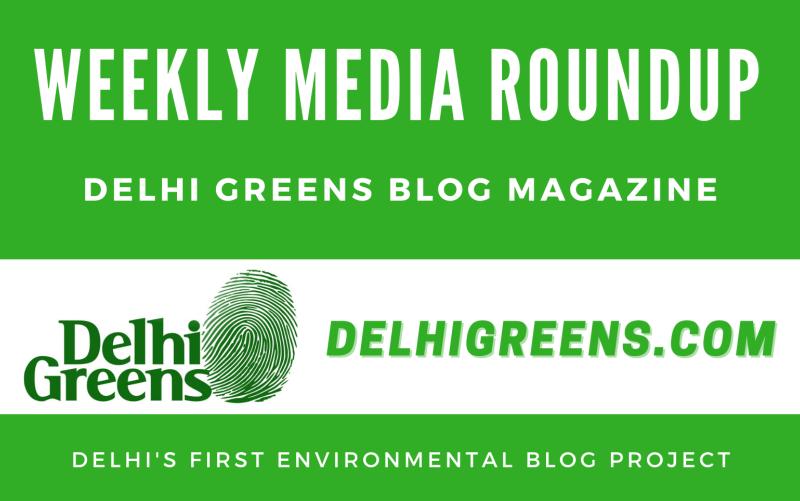 Weekly Media Roundup