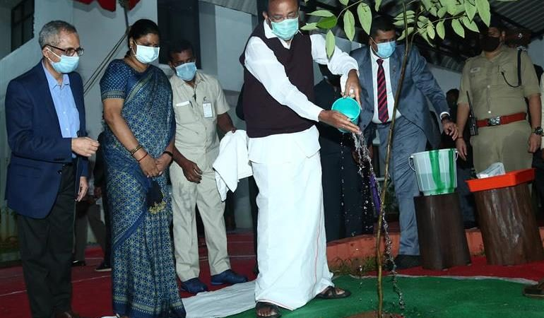 Vice President Plants Sapling at IMSc