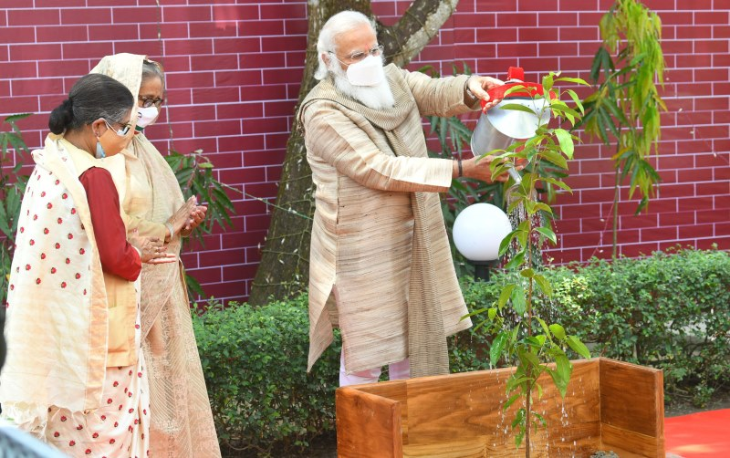PM plants sapling in Bangaladesh