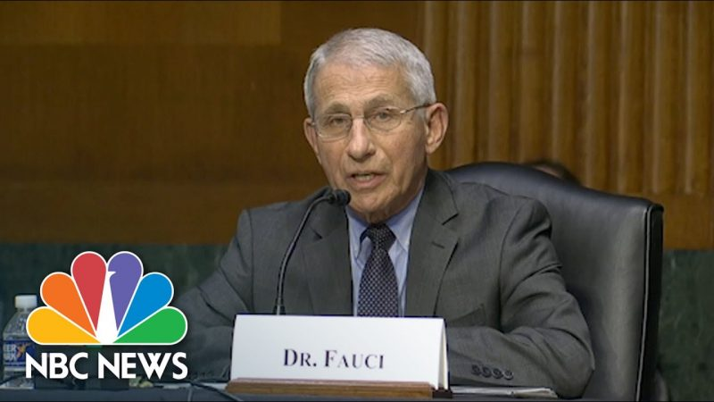 Dr Fauci Agrees Sending US Funds to Wuhan Lab